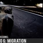 SCENARIO 6: MIGRATION
