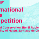 Call for Entries: SEE (Santiago Emergent Ecologies)