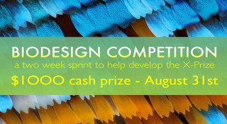 BioDesign-Competition-archi
