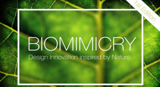 biomimicry competition