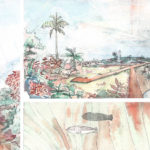 Results: 2016 Botanical Architectural Competition
