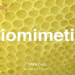 24h competition 20th edition – biomimetic