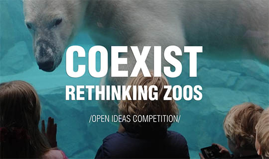 zoo architecture competition