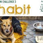 MICRO NATION CHALLENGE 3- INHABIT