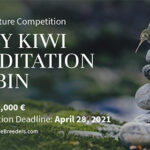 Tiny Kiwi Mediation Cabin Competition