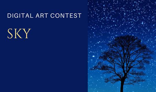 sky digital contest