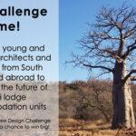 Quiver Tree Design Challenge
